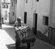 35 Joan Vila, passtiser